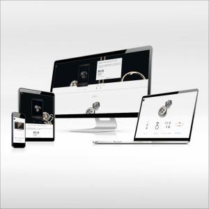 site dédié et plan média